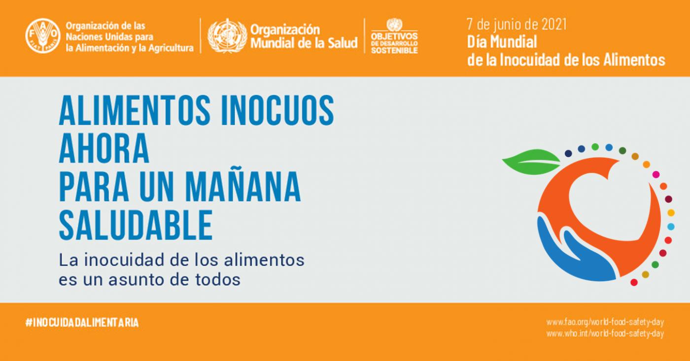 ISDI apoya el Día Mundial de la Inocuidad de los Alimentos y pide a todas las partes interesadas que se unan en pro de la seguridad alimentaria